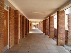 54 マラウイ大学 - まらわ~く