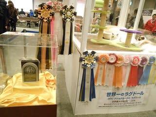 【1月6日〜8日】第10回 世界のペットニャン博が開 …