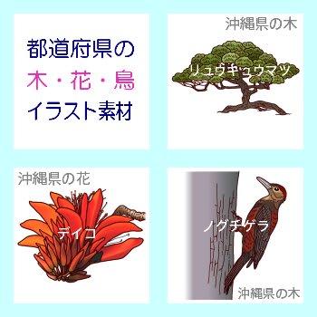 沖縄県 - 野鳥目撃地図 - birds.longseller.org
