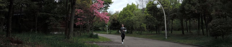Jogging_with_dogwood_flower