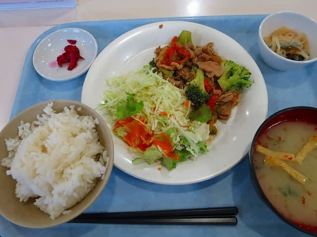 日替わり定食(豚肉とブロッコリーのオイスター炒め)