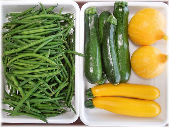 採れたて野菜 2014年6月23日