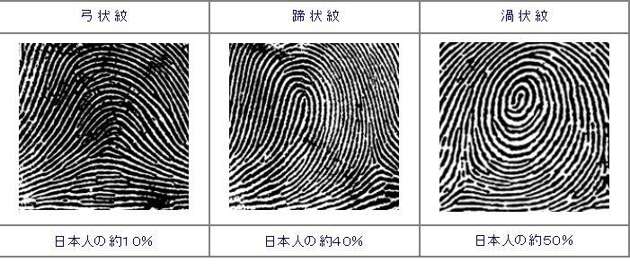 日本人の大部分は弓状紋、蹄状紋...