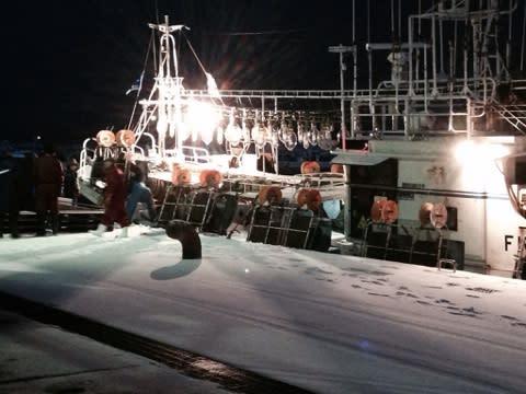 大畑漁港の愛しき海賊たち(≧∇≦...