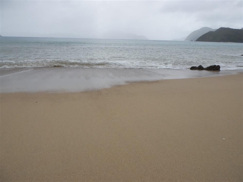 南西諸島貝殻学入門
