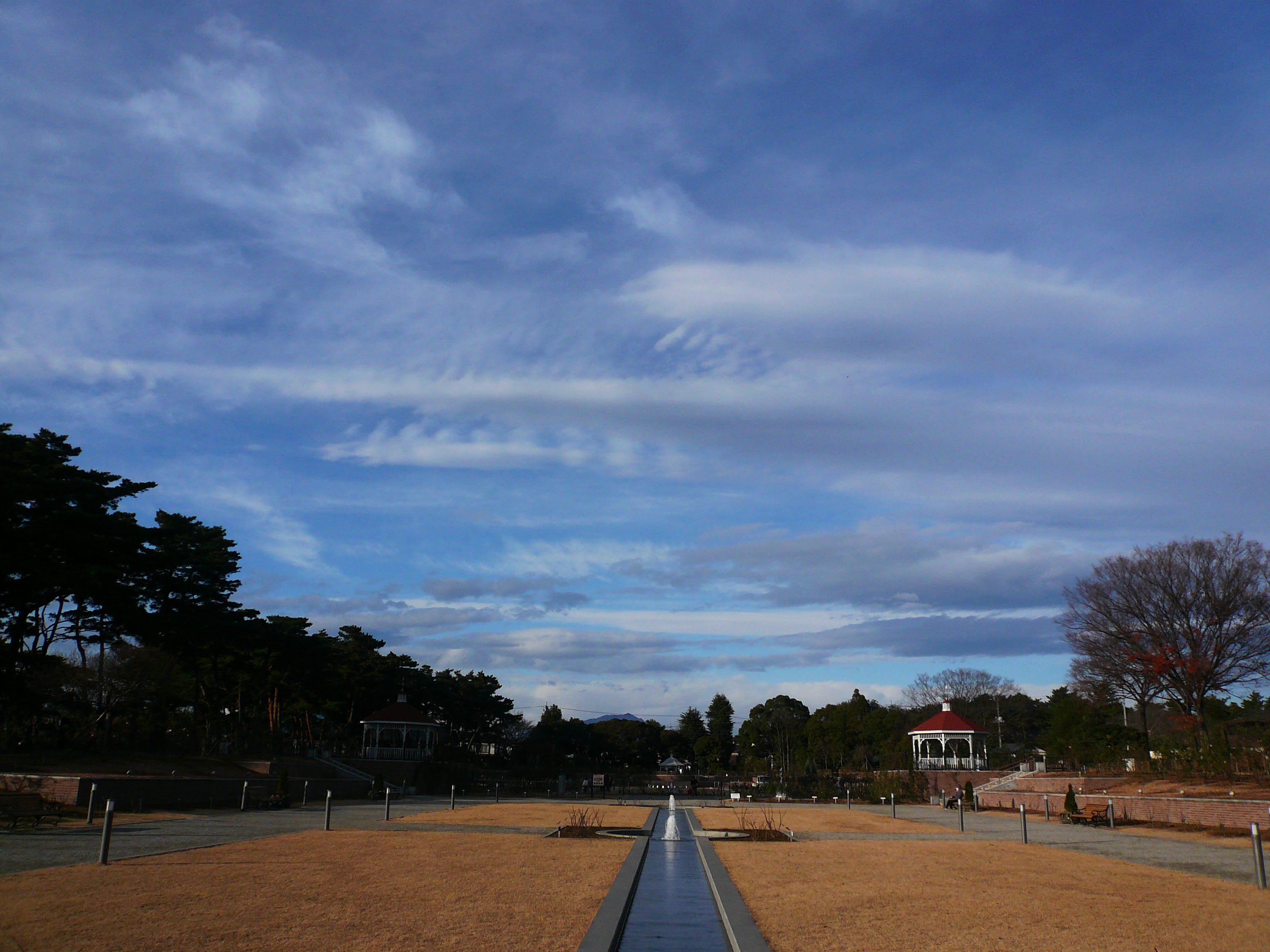 冬の公園 上総の写真 クリックすると壁紙サイズの写真 画像 になります