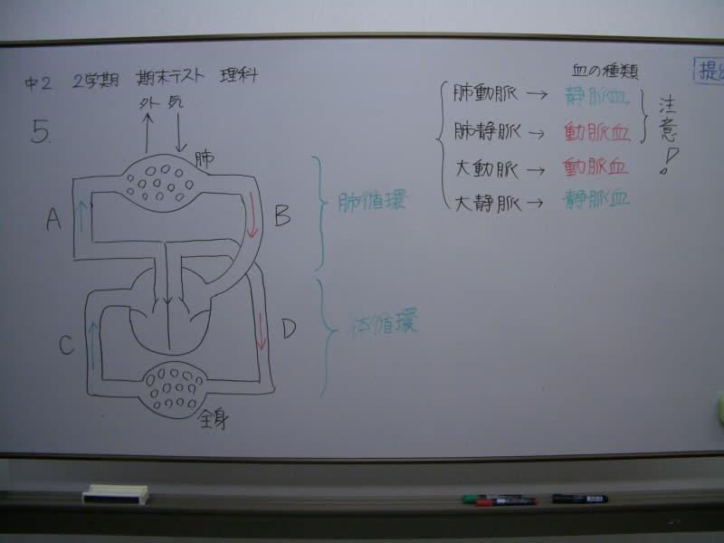 Cimg3052