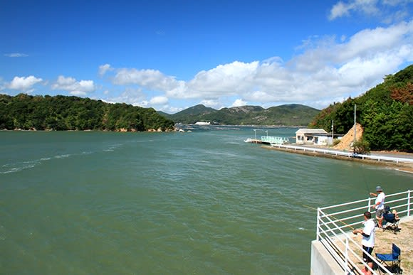 長島から見る 虫明漁港沖 牡蠣筏 ...:*☆★ - 旅するデジカメ ...