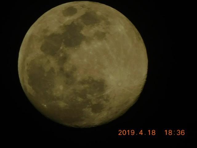 夏目 漱石 月 が 綺麗 です ね