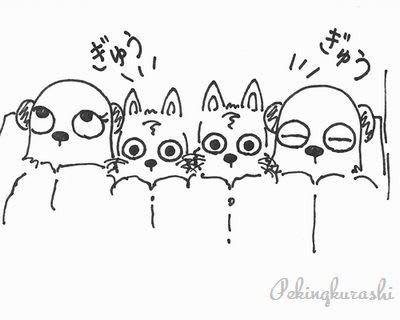 6【パンスト 動画】(3) ヴァーチャル・パンスト・オナニー 熟女編