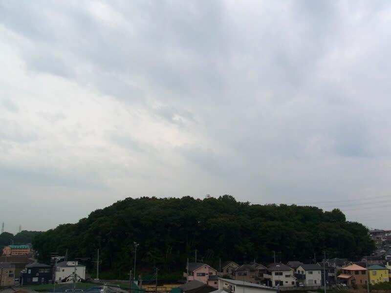 06月21日 朝の根岸台