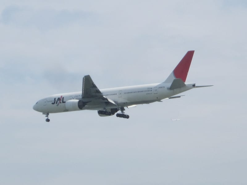Jal_262