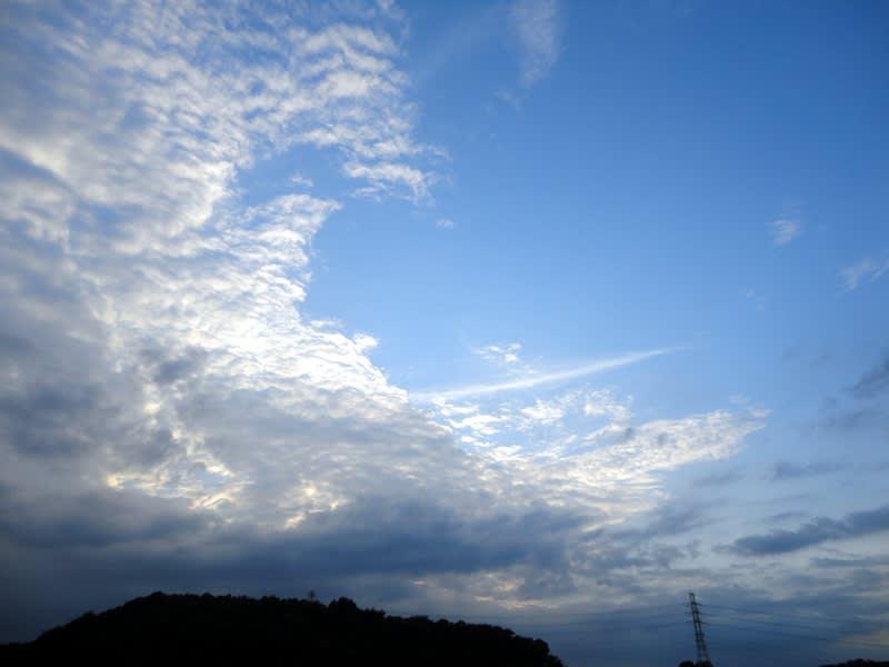08月28日 根岸台の雲