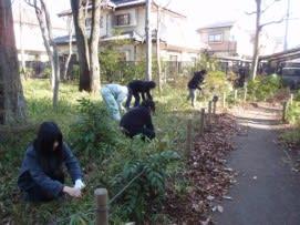 笹刈1.jpg
