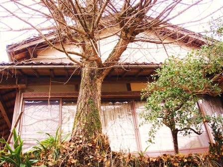 老婆」の住む「あばら家」の建て替えは・・・・ - 元ベース弾きの田舎 ...