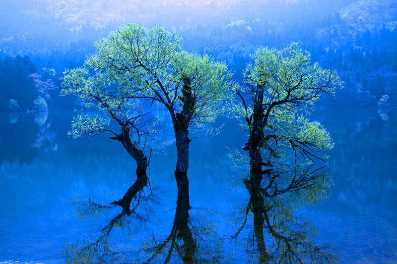 北竜湖 - 日々想うがままに