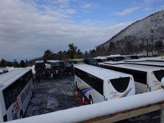 バスがたくさん。回るところがなくなって困るほどに。