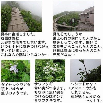 登山道巡回2