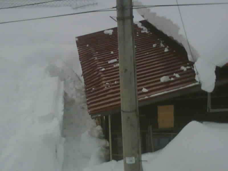 小屋の軒先が折れました