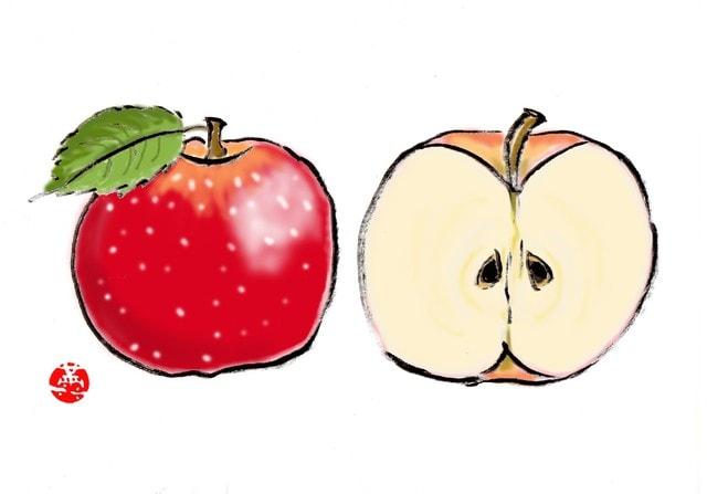 野菜 どっち アボカド 果物