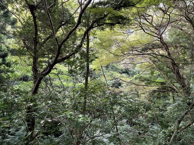 2021年9月8日 葉山 横須賀 鎌倉
