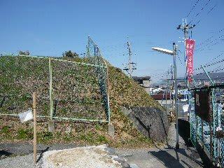 大阪府羽曳野市の安閑天皇陵とは...