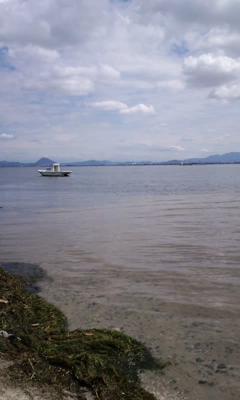琵琶湖 四ツ谷