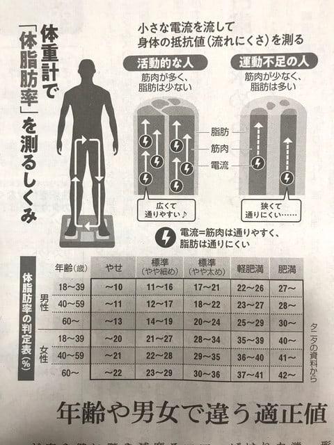 脂肪 体 率 40 女性 代