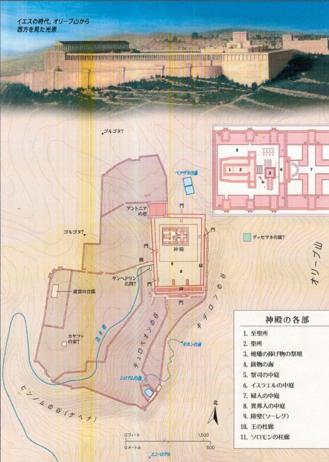 新しい神殿」 マタイによる福音書21章12~16節 - 日本福音教団 ...