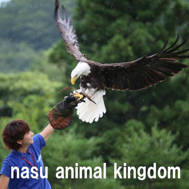 nasu-oukoku