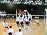 urawaza-volleyball