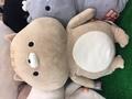 ma_chan666