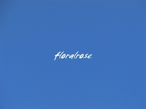 floralrose