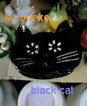 black-cat_2005