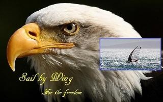 freedomeagle