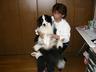 yorozuya2001
