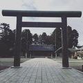 hide-yoshi0313