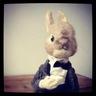 wool_rabbit